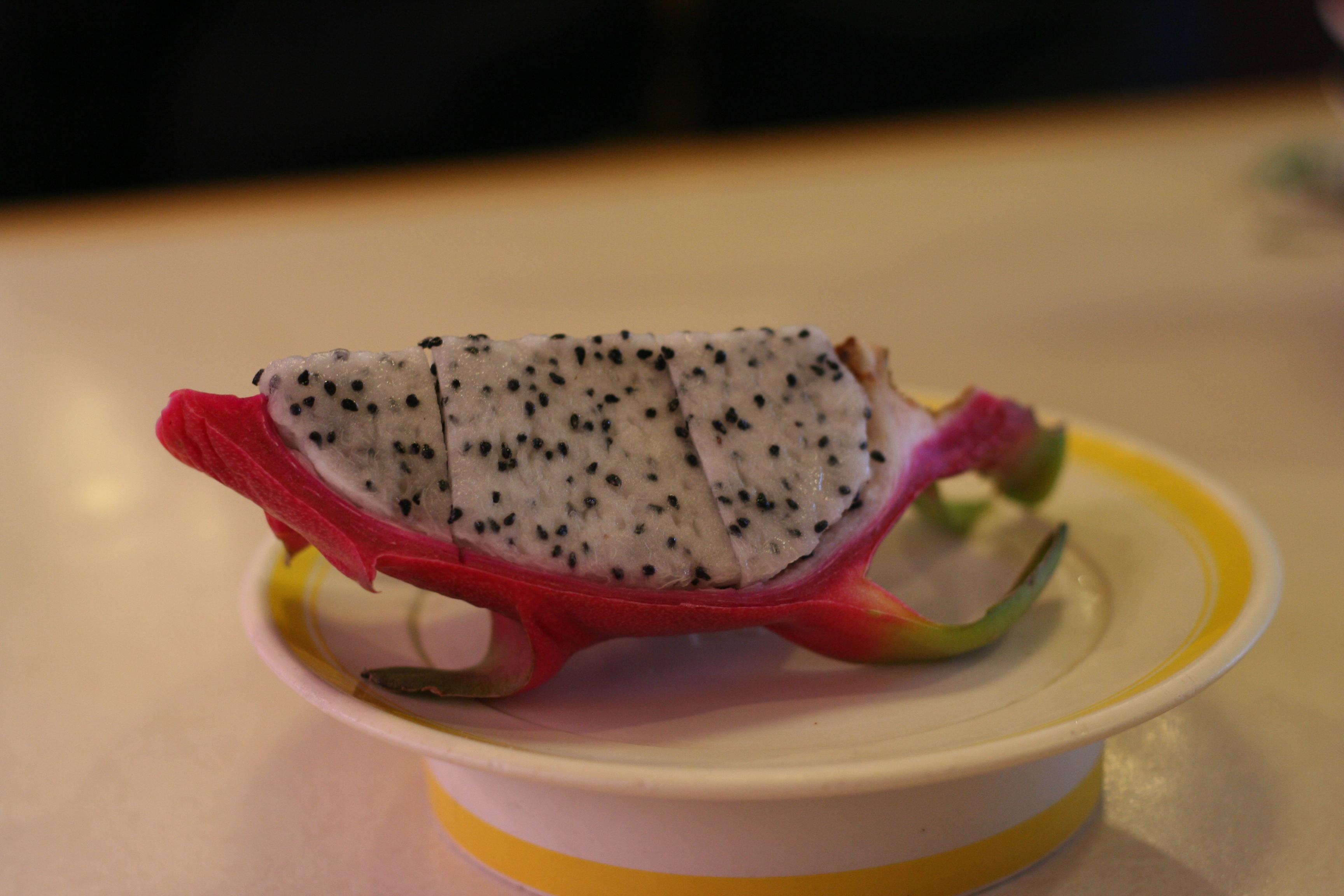 일본회전초밥-하마즈시52
